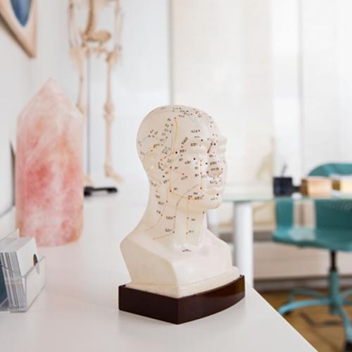 Model eines menschlichen Kopfes zur Darstellung von Akupunktur